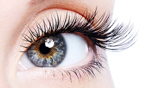 Eyelash Extensions & Services